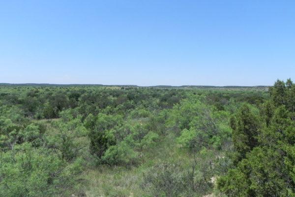 McAdams Ranch